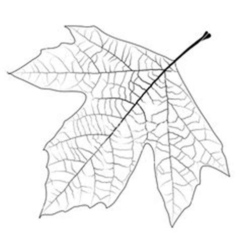 imagenes otoño halloween moldes de hojas de oto 241 o 7 fachadas pinterest hojas