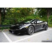 Black Lamborghini Gallardo