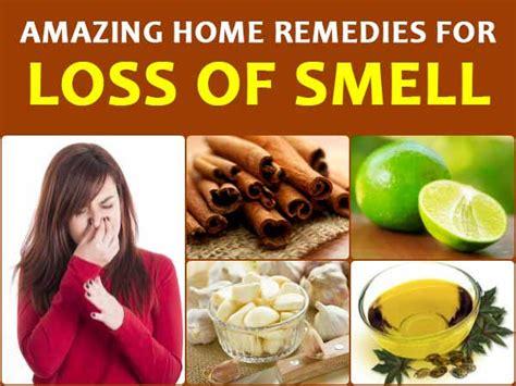 8 Amazing Home Remedies For 8 Amazing Home Remedies For Loss Of Smell Boldsky