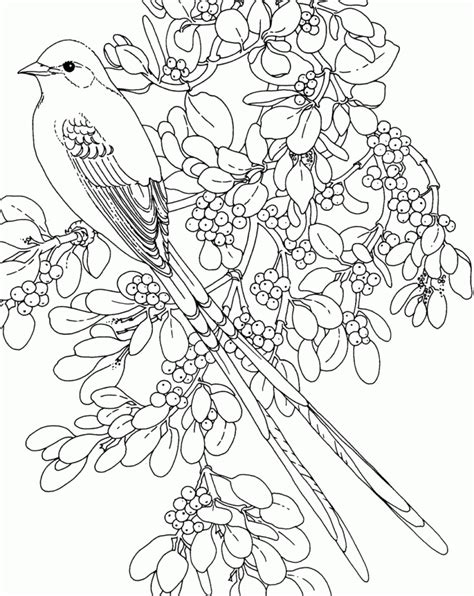 free coloring pages of trees and flowers coloring pages coloring book pages flowers coloring pages
