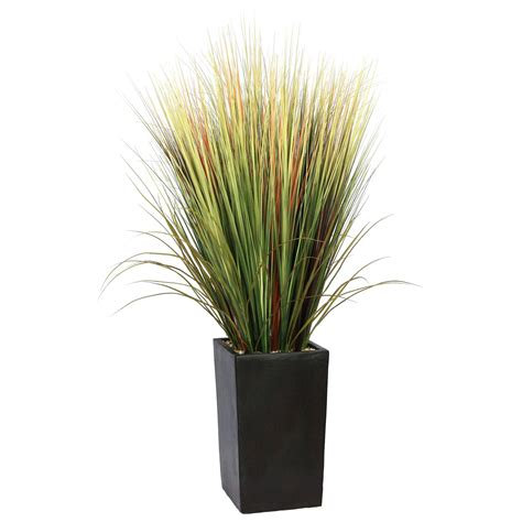 Grasses In Planters by 5 Foot Grass Floor Plant In