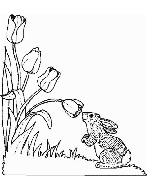 coloring pages of animals and flowers free coloring pages of flower border