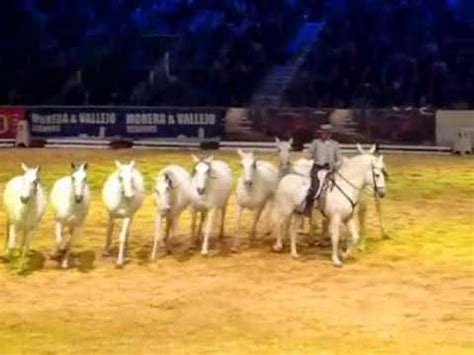 salon internacional del caballo sicab 2012 sal 211 n internacional del caballo de sevilla