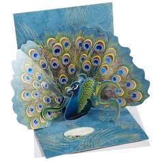 Peacock Pop Up Card Template by Pop Up Peacock Card