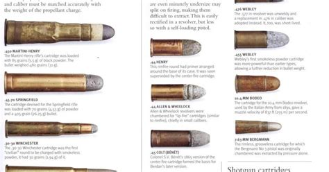 ammo and gun collector pre 1900 ammo cartridges