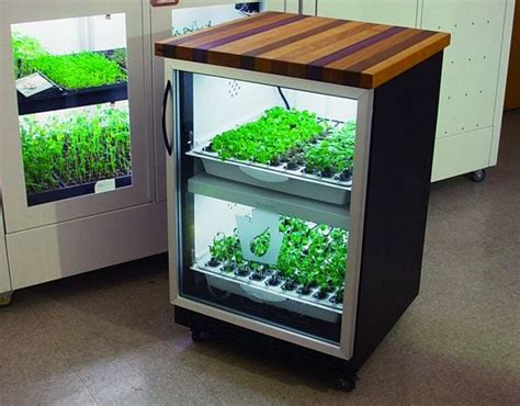 Urban Cultivator Home Is A Mini Hydroponic System For Your Kitchen