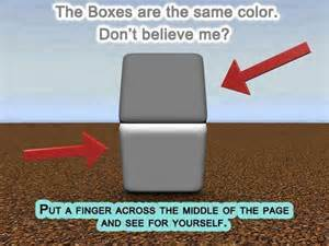same color illusion same color puzzles and illusions
