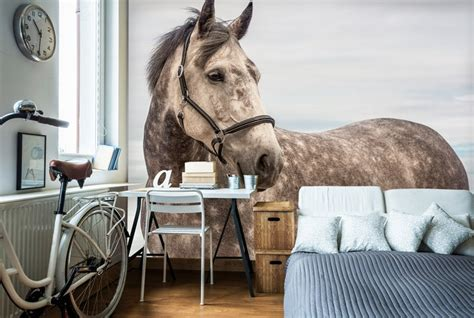 horse wallpaper for bedrooms 9 types of animal wallpapers for your home wallsauce canada