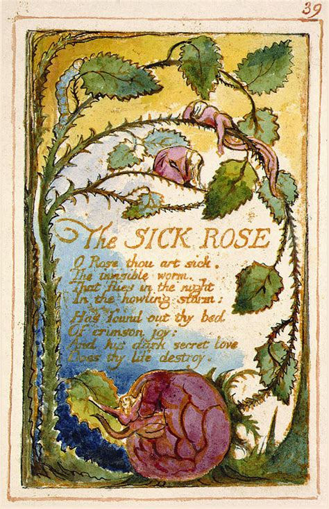 Theme Sick Rose William Blake | juan pablo forner reading club the sick rose