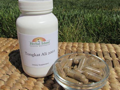 Pasak Bumi Akar Kilo An Tongkat Ali tongkat ali 200 1 root extract powder capsules pasak bumi