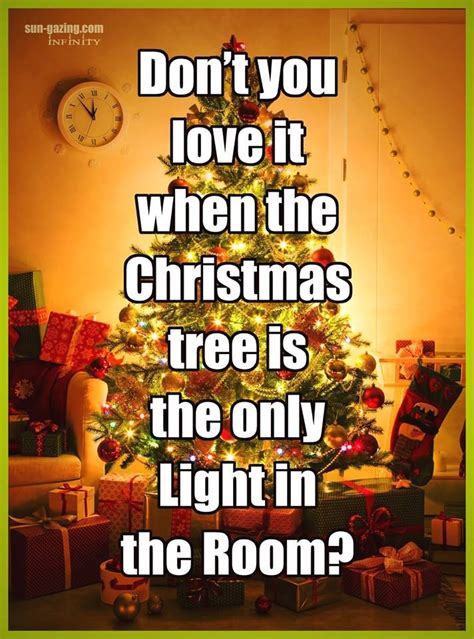 dont  love    christmas tree    light   room pictures