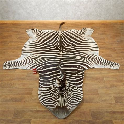 zebra rug for sale zebra size rug for sale 17869 the taxidermy store