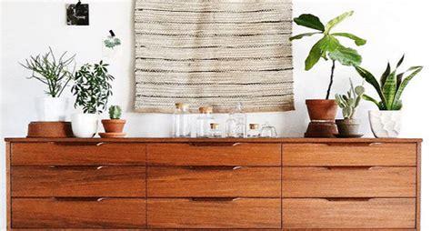 arredare casa con poco arredare casa con le piante grasse idee da realizzare con