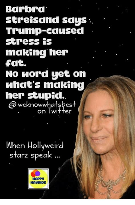 Barbra Streisand Meme - search barbra streisand memes on me me
