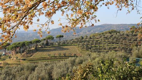 best things to do in tuscany top 10 things to do in tuscany italy pack of peanuts