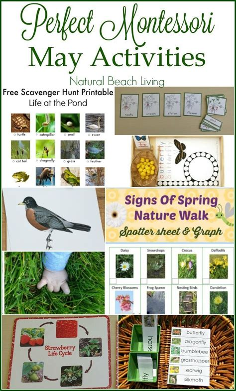 kindergarten themes for may 1000 images about seasonal may spring mother s day