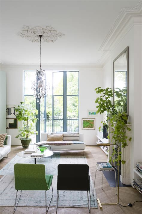 living room plants mix of white green victorian style house in london