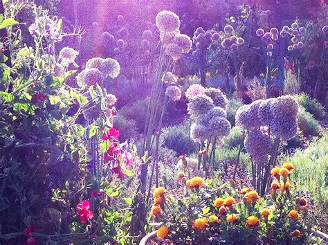 Hotel R Best Hotel Deal Site Magical Flower Garden