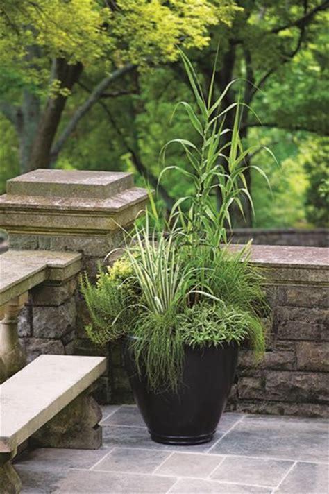 Container Garden Pictures Gallery Garden Design Cheekwood Botanical Garden