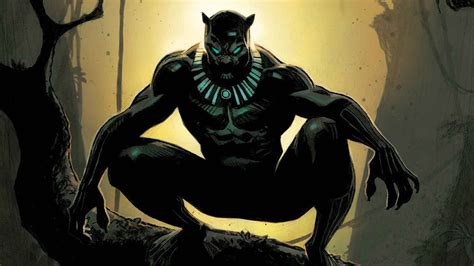 marvel s black panther the illustrated history of a king the complete comics chronology black panther characters marvel