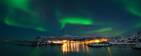 when are the northern lights in norway wildlife northern lights in senja norway