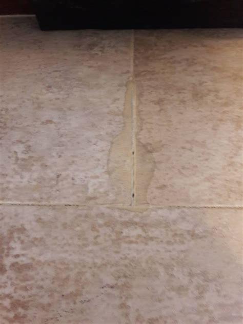 empire carpet indianapolis reviews carpet review