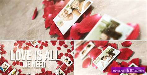 Falling Flower Petals After Effects Project Videohive 187 Free After Effects Templates After Falling Flower Petals After Effects Template Free