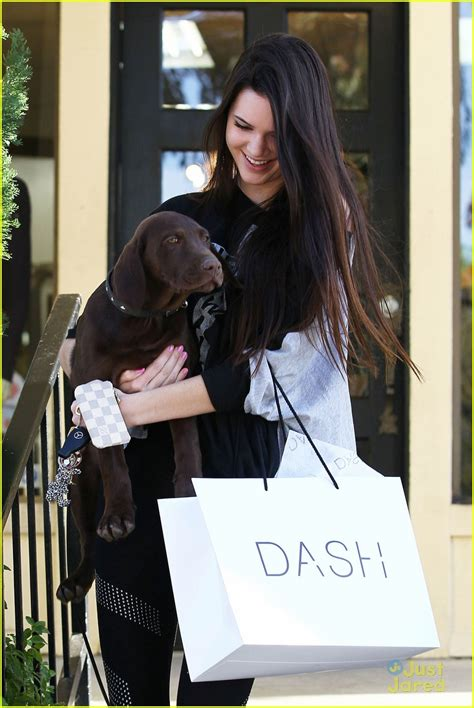 jenner puppy kendall jenner dash photo 456317 photo gallery just jared jr