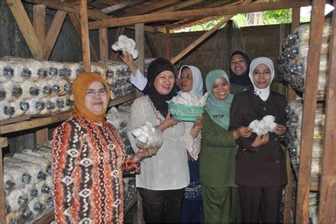 tp pkk kabupaten ogan ilir panen jamur tiram  pondok