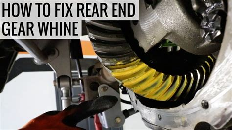 how to a not to whine how to fix rear end gear whine mullet mustang ep10