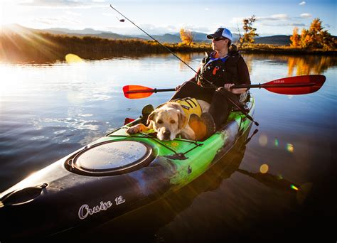 kayak for dogs paddling 6 tips for taking your pooch canoeing