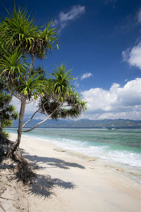 gili meno indonesia gili meno gili islands indonesia tripcarta