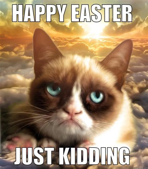 Easter Memes - grumpy cat easter meme quickmeme