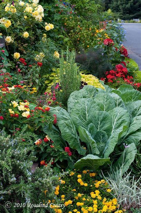 Edible Flower Garden Edible Gardens Gardens Flower And Edible Garden