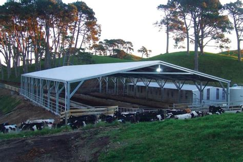 Shearing Shed For Sale by Shearing Sheds For Sale Wide Span Sheds