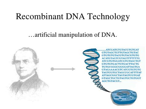 section 13 1 review dna technology genetics in the news recombinant dna technology