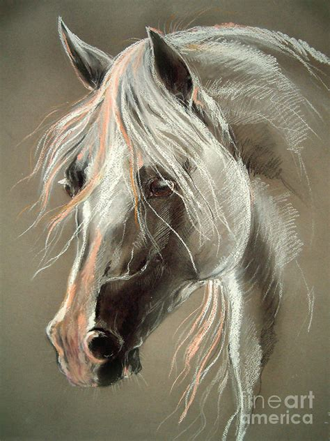 Duvet Cover Tutorial The Grey Horse Soft Pastel Drawing By Angel Tarantella