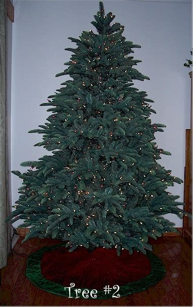 balsam hill christmas trees reviews frontgate tree reviews sanjonmotel
