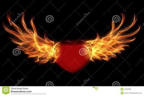 alas de fuego 8445002880 coraz 243 n con las alas del fuego fotos de archivo imagen 19623603