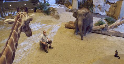 Zoo Keeper by Zookeeper Picture 5