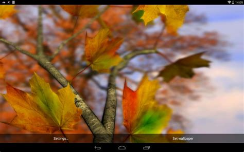 google images fall leaves autumn leaves in hd gyro 3d parallax wallpaper android