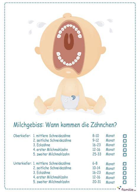 wann erster zahn milchgebiss wann kommen babys z 228 hne babies