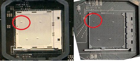 Am3 Sockel by Asus Claims Certain Boards Am3 Compatible Says Zilch About Bulldozer Hothardware