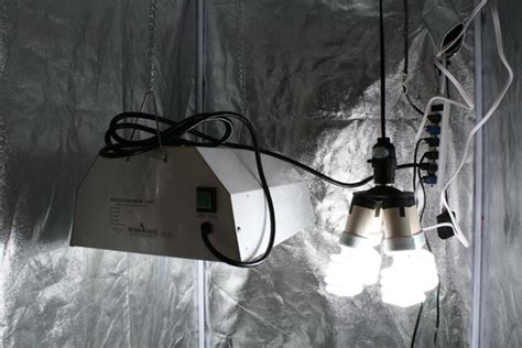 Diy Cfl Grow Light Fixture Diy Cfl Grow Light Inventgeek