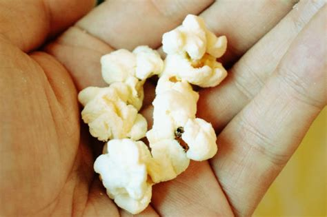 Size M Garret Popcorn Special Flavor popcorn shop quot dock popcorn quot that stuffs from standard to