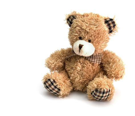 best 28 names for stuffed bears 1000 images about cute