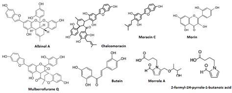 Eclipta Alba Extract 50 Ml morus alba scientific review on usage dosage side