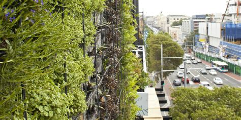 Vertical Garden Sydney One Central Park Vertical Gardens Curating Cities A