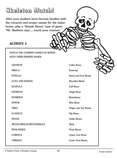 skeleton match word matching page parents scholastic com