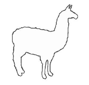 cartoon llama pictures clipart best